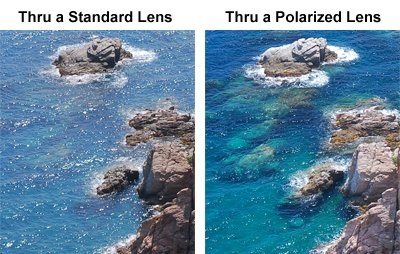 Polarized Sunglasses vs Standard Sunglasses, What's the difference?